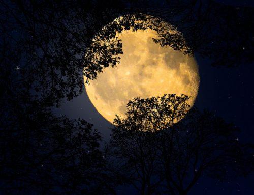 Die Kraft des Mondes