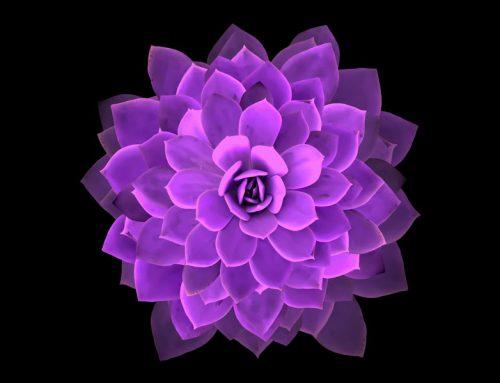 Was ist und bewirkt die heilige Geometrie?